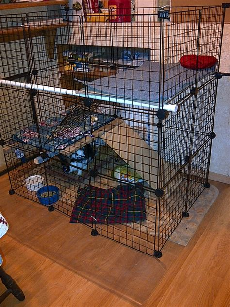Rabbit Cage Shelf by 44 Best Organization Craft Rm Grid Crates Images On