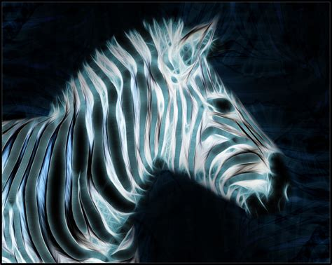 cool zebra wallpaper fractal zebra wallpaper by pimart on deviantart