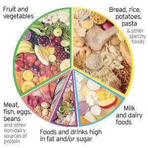 how to do just about anything eat a healthy balanced diet taxstudents