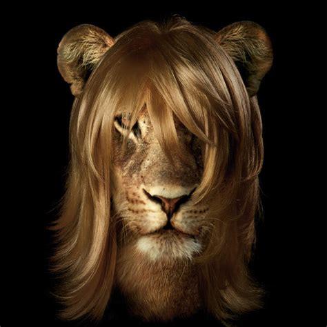 sustitucion de imagenes retoricas animales que son homosexuales has le 237 do bien quo