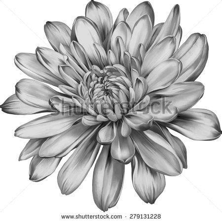 november flower tattoo 17 best ideas about november flower on