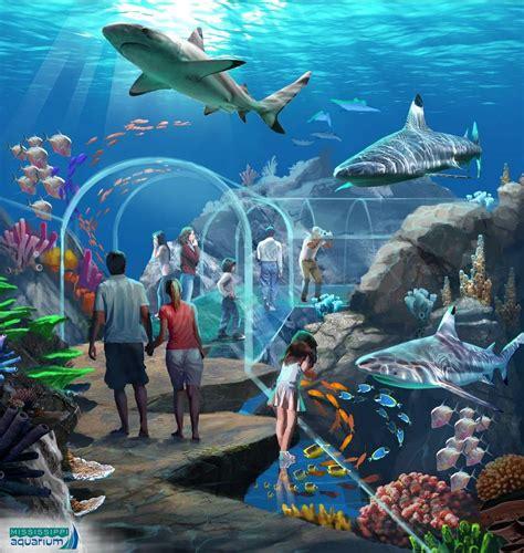 aquarium design concept shark tunnel experience concept art by pgav destinations