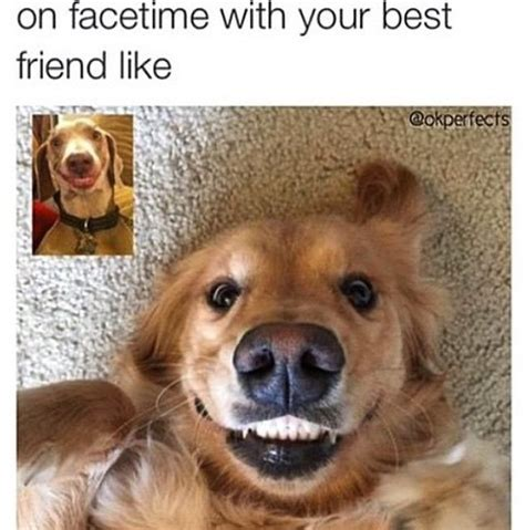Funny Best Friend Meme - embracing technology that brings you closer bffs memes