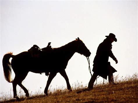 horse cowboys animals wallpapers hd desktop  mobile