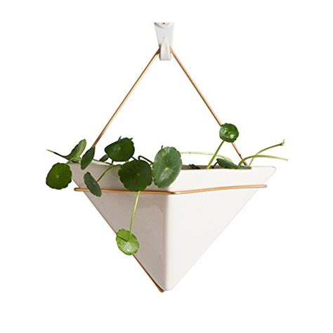 phenomenal decorative wall planters indoor decorating hanging planter for indoor plants geometric wall decor