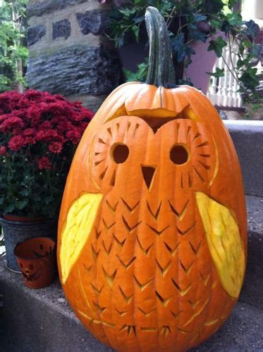pumpkin owl top 5 pumpkin carving patterns and ideas