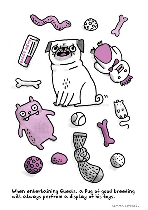 pug etiquette a pug s guide to etiquette an illustrated book by gemma correll