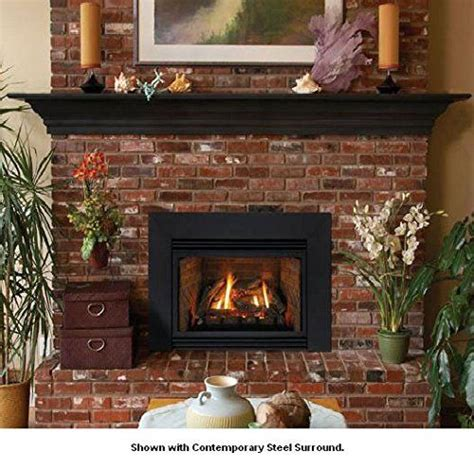 Decorative Gas Fireplace Inserts by The World S Catalog Of Ideas