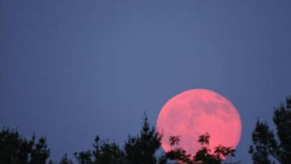 rare strawberry moon rises first day of summer plus strawberry moon dazzles in new england skies 171 cbs boston