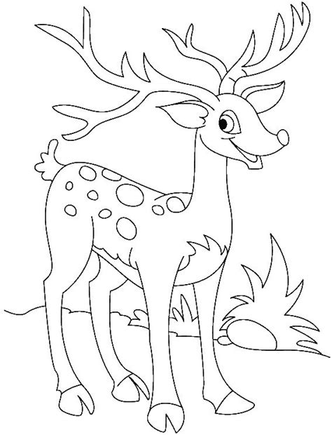 pokemon coloring pages deer deer pokemon coloring pages coloring pages
