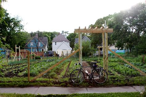 Urban farmers in the northlands the irresistible fleet of bicycles