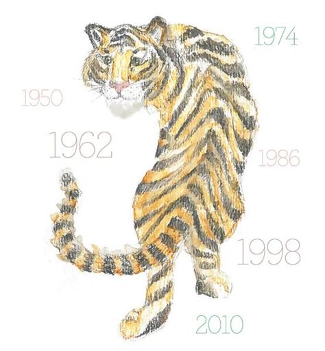 new year animal tiger 62 best images about year of the tiger astrology on