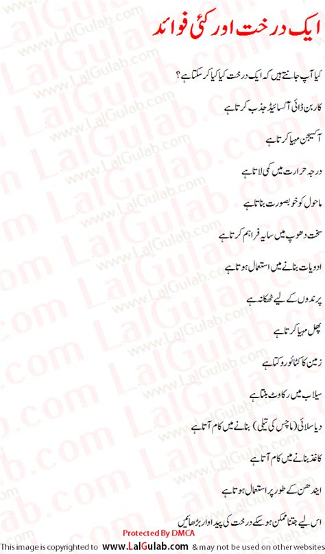 Importance Of Trees Essay In Urdu khwab ki tabeer khawab ki tabeer khwabon ki tabeer tree essay in urdu importance of tree