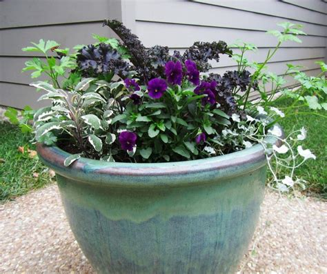 Winter Container Garden by Our Front Porch Winter Container Gardens Tips And Tricks