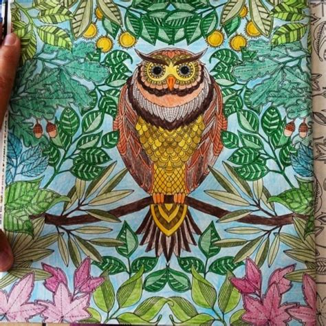 npr secret garden coloring book coloring books for adults this is amazing