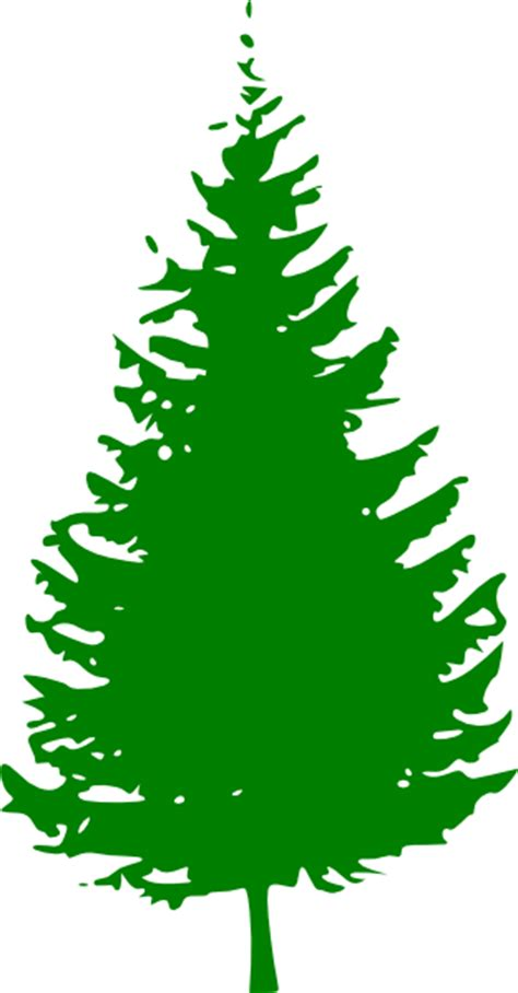 Pine Tree Outline by Pine Tree Outline Clipart Best Clipart Best