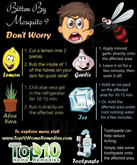 home remedies for mosquito bites top 10 home remedies