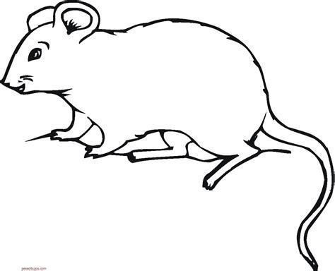 dibujos infantiles para colorear de ratones dibujos de ratones para colorear