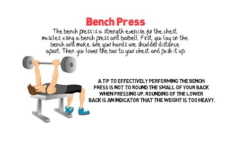 bench press programs bench press programs 28 images super fitness bench