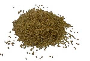 canary seed british finch seed cage bird seed