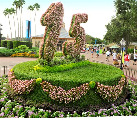 no baking required disney s horticulture disney parks blog