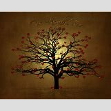Family Tree Roots Background   1752 x 1378 jpeg 1599kB