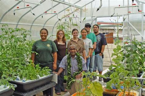 Honolulu Vegetable Garden And Greenhouse Get A Quot Green Vegetable Gardening In Hawaii