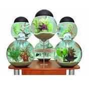 7 Amazing Aquariums And Fish Tank Designs &amp Systems  Urbanist