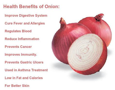 benefits of onion for hair onion benefits health benefits of onions