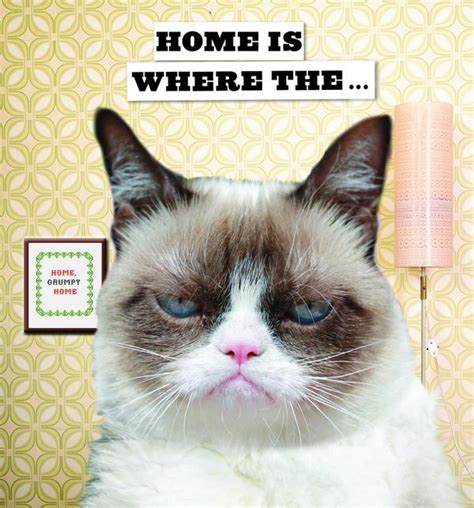 Grumpy Cat Good Morning Meme - guess who s on gma tomorrow grumpy cat finish the