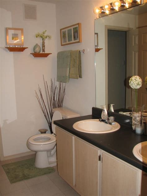 bathroom decorating ideas for apartments 4 trendy modscom - Bathroom Designs Adelaide