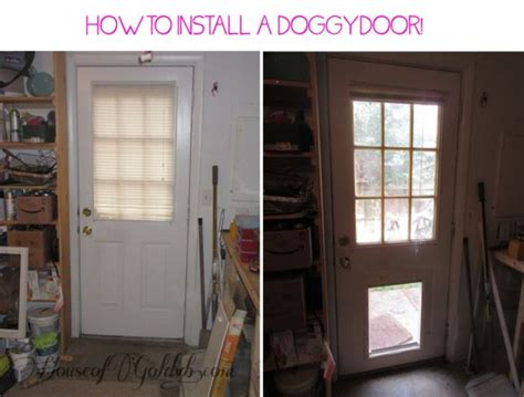 install  doggy door   day diy doggie door