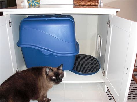 litter box bathroom diy stealth cat litter box for bathroom pet friendly