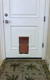 pet door gallery pet doors 187 pet doors in standard doors