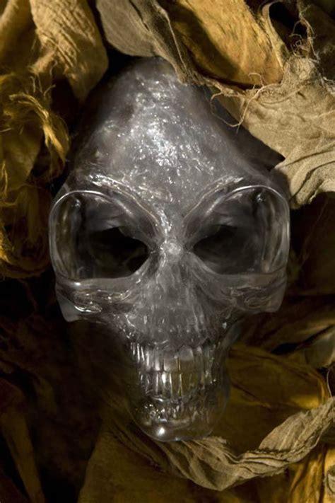Skull Of Indiana skull of akator indiana jones wiki raiders of