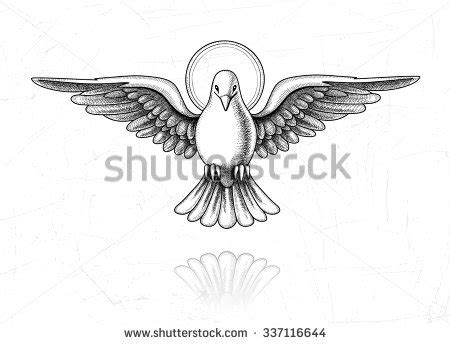 holy spirit dove stock images royalty free images