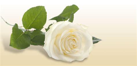 mantovani onoranze funebri necrologi ed invio messaggio di cordoglio alla