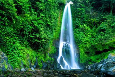 Fito Green Original Denpasar Bali interesting places in buleleng singaraja bali