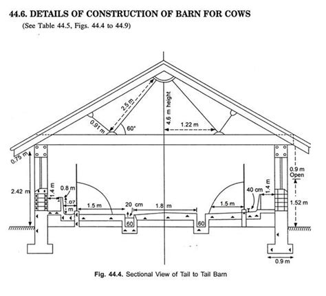 dairy cattle housing  layout  dairy farm