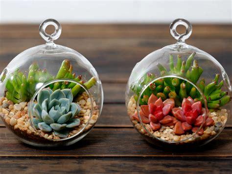 Zen Decorating Ideas Pictures a beginner s guide to making a succulent terrarium world