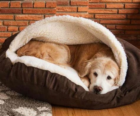 dog cave bed dog cave bed im buying this
