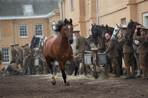 themes of the story a horse and two goats war horse a beautiful poetic traumatic love story a