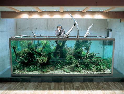 aquascape design amano takashi amano dies at the age of 61 reefs com
