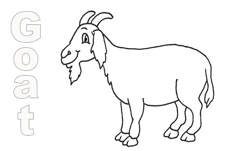 coloring pages mountain goat mountain goat m coloring page coloring pages mountain goat