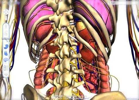 format askep terbaru makalah penyakit crohn disease satya excel site ساتيا