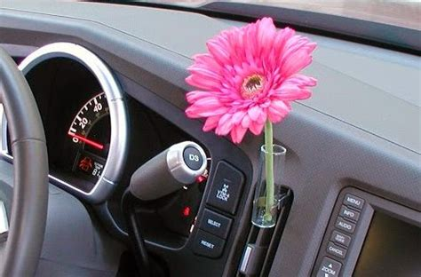 scaryduck  scary   duck  flowers  volkswagen beetles whats