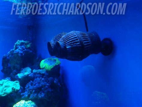 Harga Pompa Aquarium Eheim inspirasi aquarium ini luaarrr biaasaaa ferboes