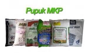 Pupuk Mkp Untuk Jeruk kandungan hara dan manfaat pupuk mkp