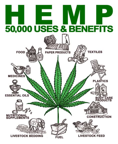 why is hemp illegal bee line hemp wick 174 the world s