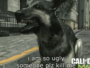 Call Of Duty Dog Meme - image 552634 call of duty dog know your meme